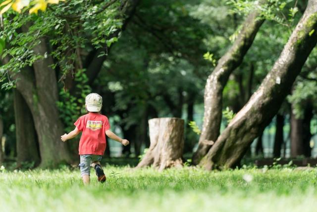 夏に森で遊ぶ子供